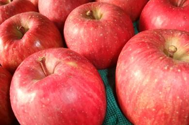 Appleスタイル