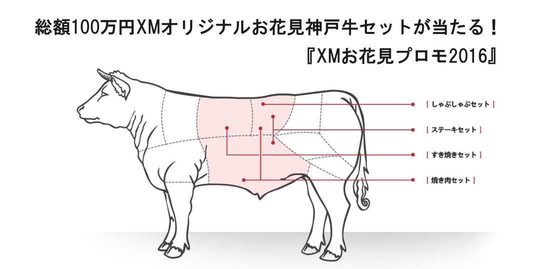 xm_beef01.jpg